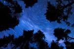 The Way Of Stars