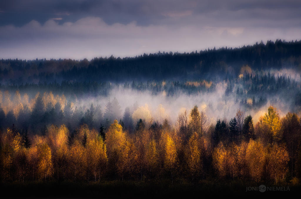 Colors Of Autumn by Nitrok