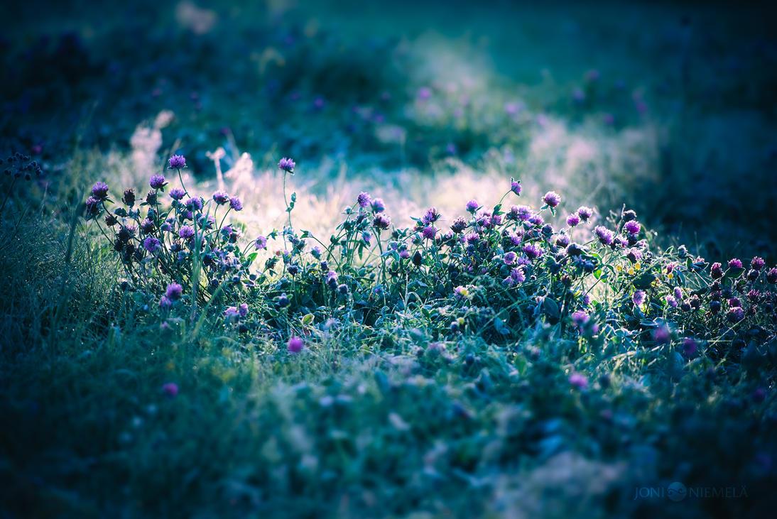Hues Of Blue by Nitrok