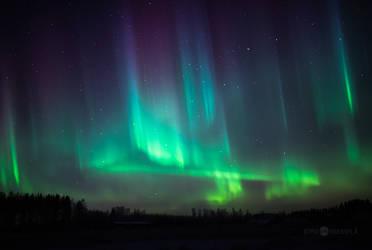 Northern Lights Of Christmas by JoniNiemela