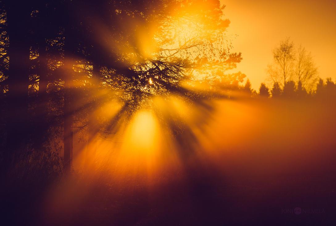 Autumn Sunrays by JoniNiemela