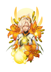 OW-Birds-Mercy by silverteahouse