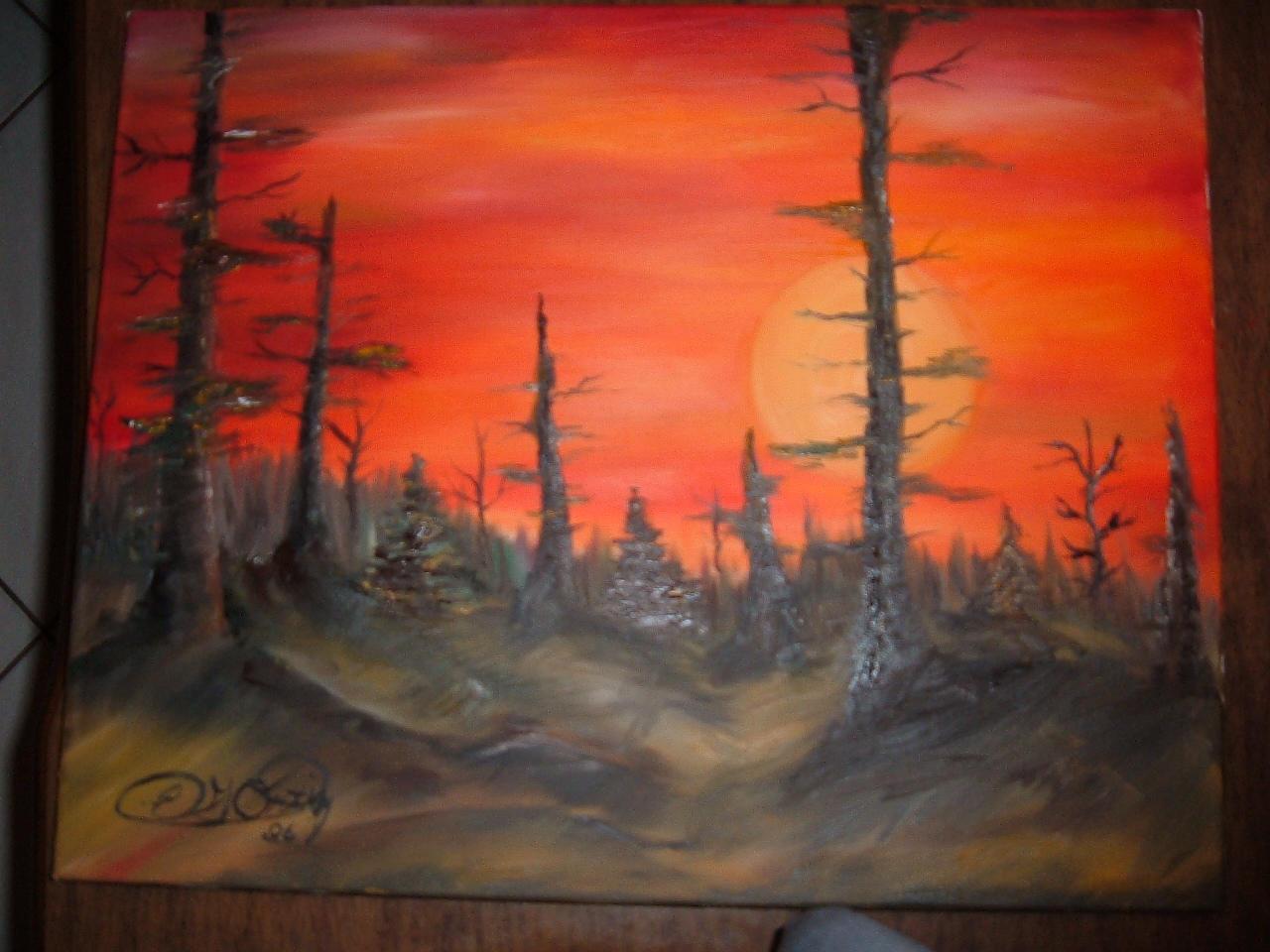 dryforest? forestfires ? by egortizv