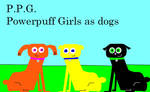 PPG as dogs