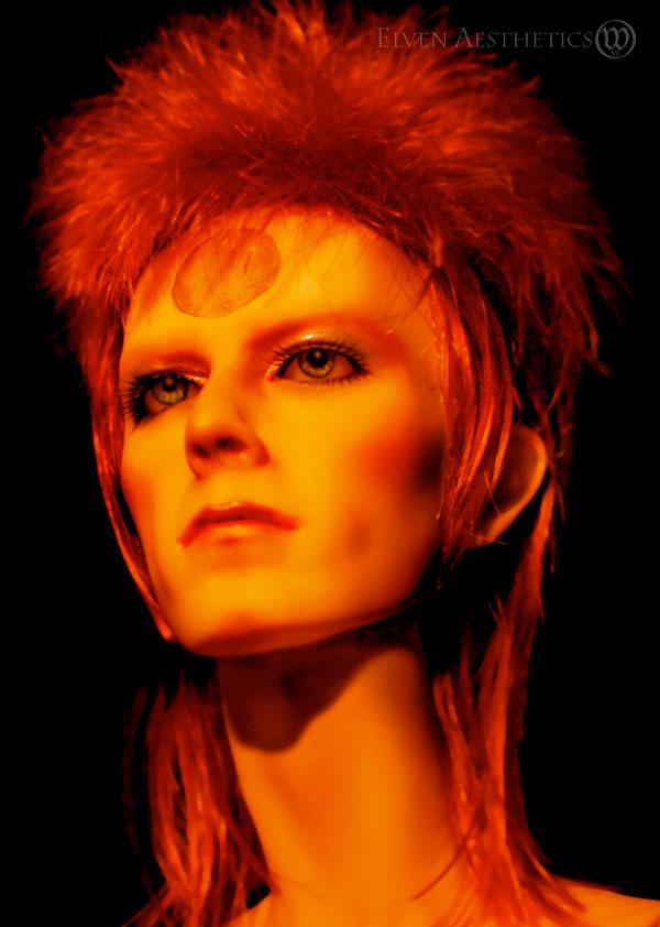 Ziggy Stardust by Katyok