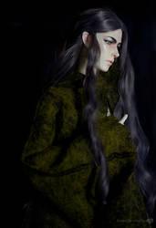 Elvenking by Katyok