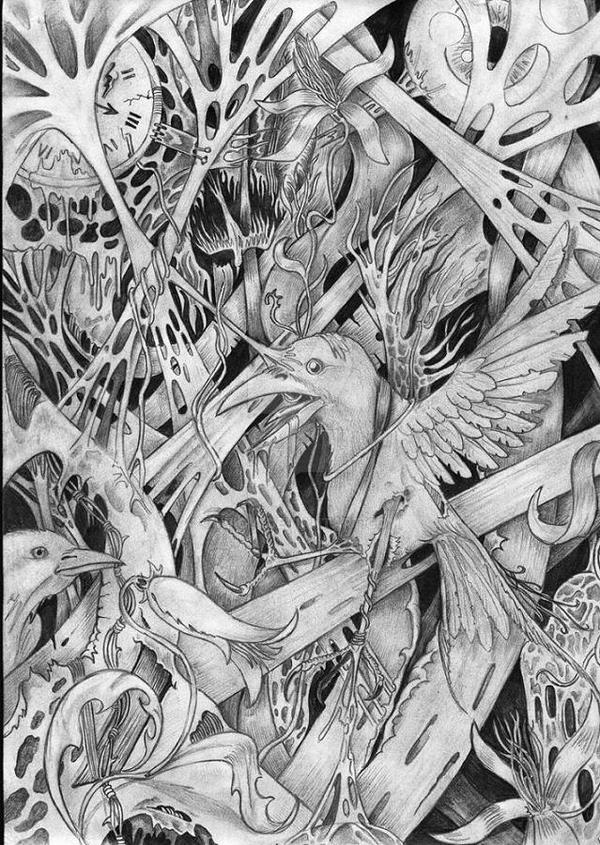 bird by Wiicia