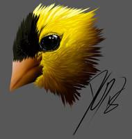 Goldfinch Warmup