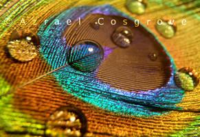 Droplets 7 by Hilaryfan97