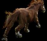 PRECUT Stock - Chestnut Horse