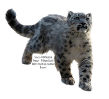 PRECUT Stock - Snow Leopard by TriOpticStock