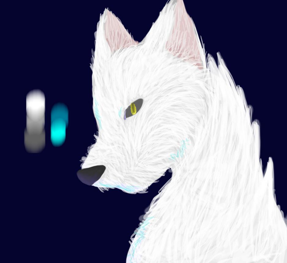 Fur Test by hazelstiltskin