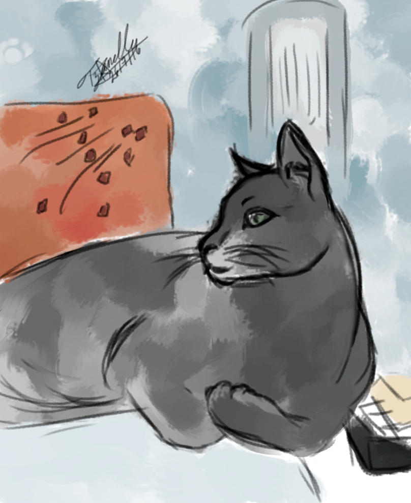 El gato de mi maestro by tzanelly