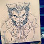 Wolverine warm up