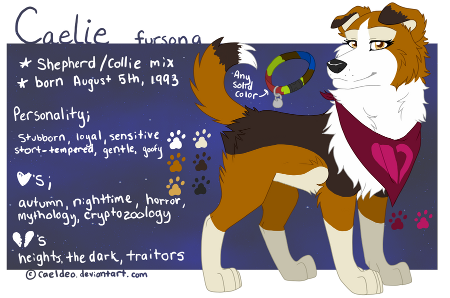 2013_reference__fursona_by_caeldeo-d5sem