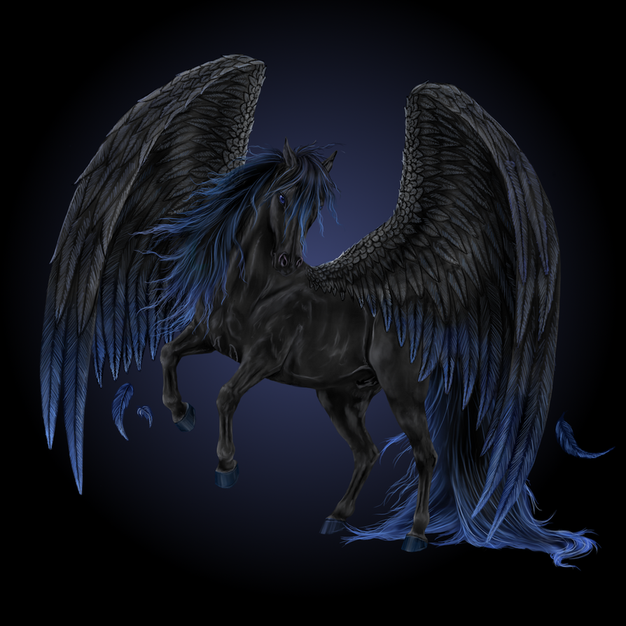 Black Pegasus by Howrseprofile on DeviantArt