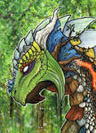 ACEO/ATC: Druid