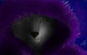 SdJ: Fur