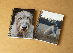 Commission: Diaries for Tarata