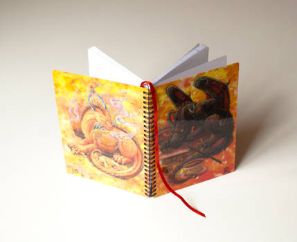 Commission: Diary for MetalDragoness