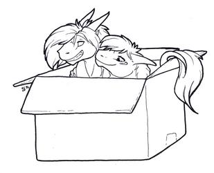 InkTober - No. 26: Box by Samantha-dragon