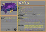 WoC: Mount ID: Orion