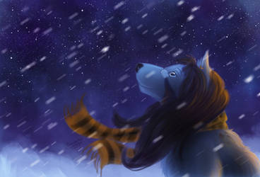 Raffle prize: First snow
