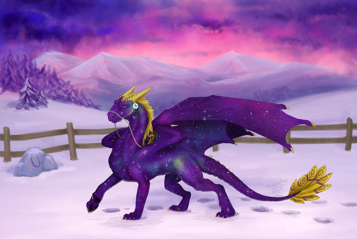 Contest/Event: Purple Beauty