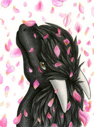 Gift: Petals by Samantha-dragon