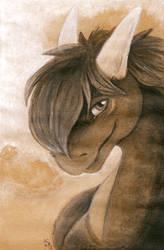 Toned Dreit by Samantha-dragon