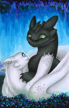 FanArt: Toothless and white night fury girlfriend