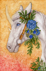 Contest/Event: Flowery Rosita by Samantha-dragon