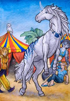 Contest/Event: Scared mare