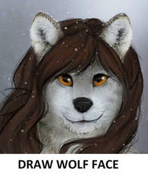 Challenge: Draw Wolf Face