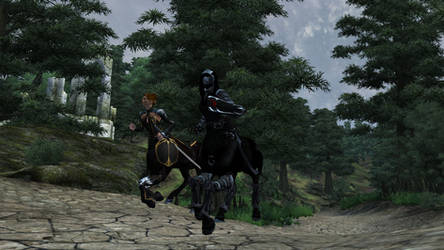 Oblivion centaurs - Dark Brotherhood for women
