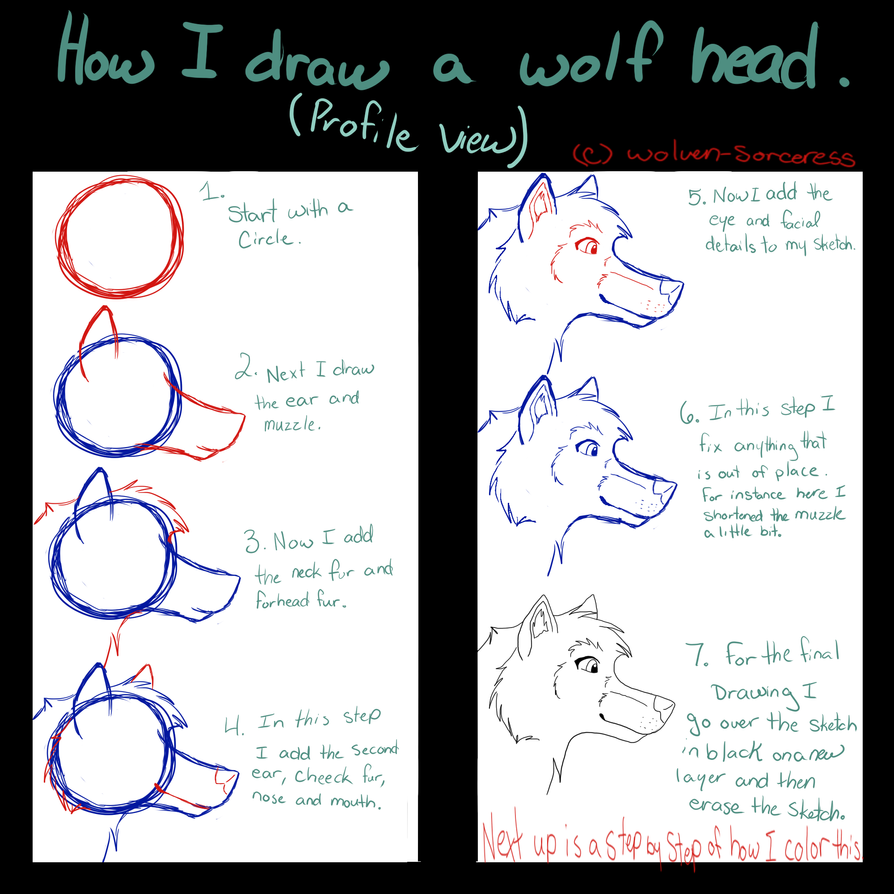Grey Wolf Howling At The Moon Drawing How To Draw Wolf Head