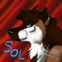 Sol - 500x500 gift