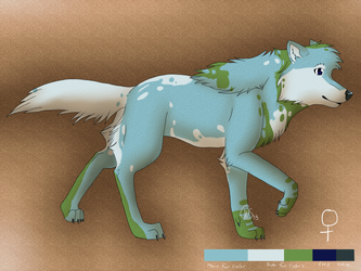 Earth Adoptable - Ref Sheet by Wolven-Sorceress