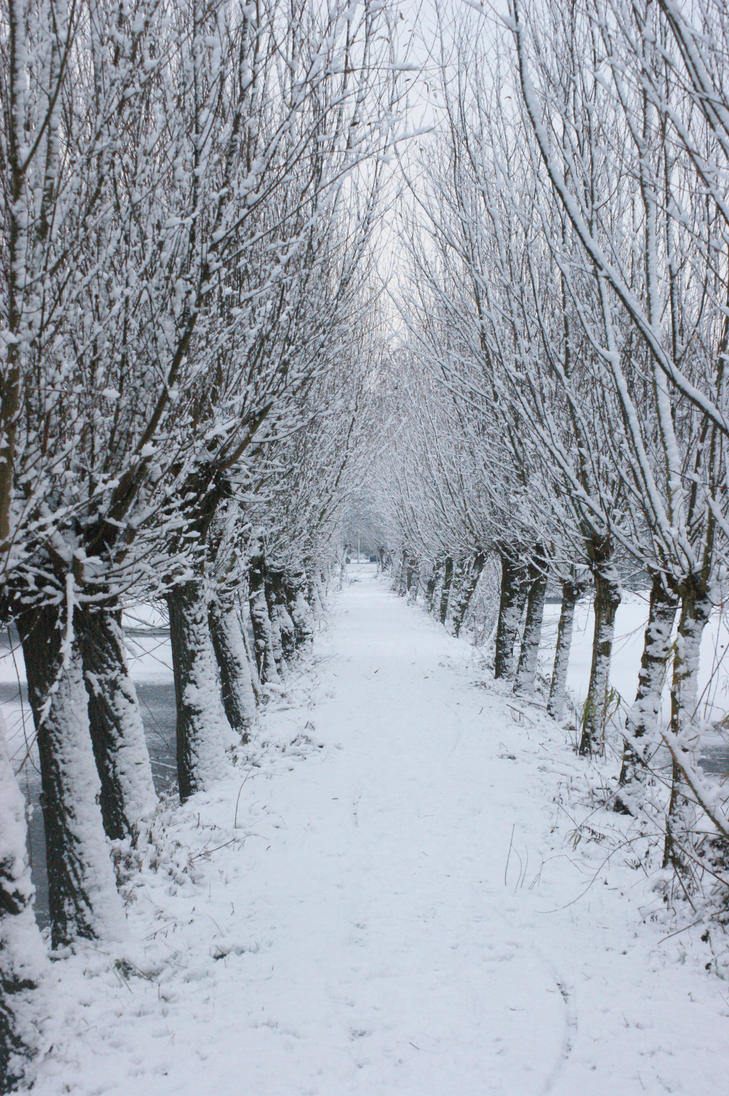 Snow white path by picture-melanie