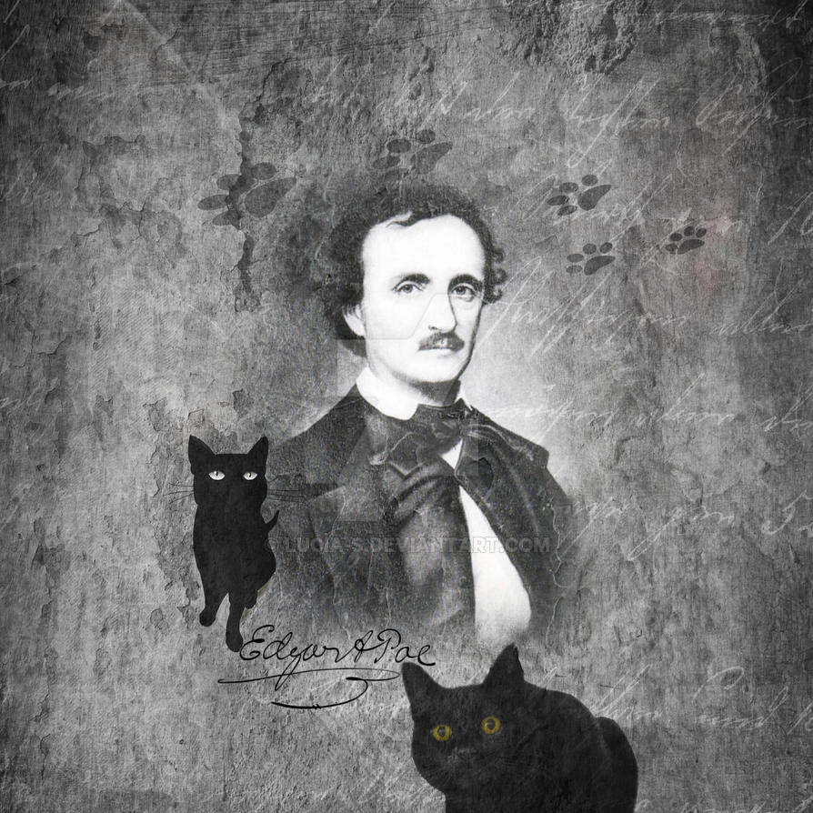 stylistic analysis of poe s black cat 'the black cat' is one of the most powerful of poe's stories, and the horror stops short of the wavering line of disgust (quinn 395) poe constructed this story in such a way that the events of the tale remain somewhat ambiguous.