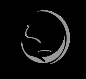jormunartserpent's Profile Picture