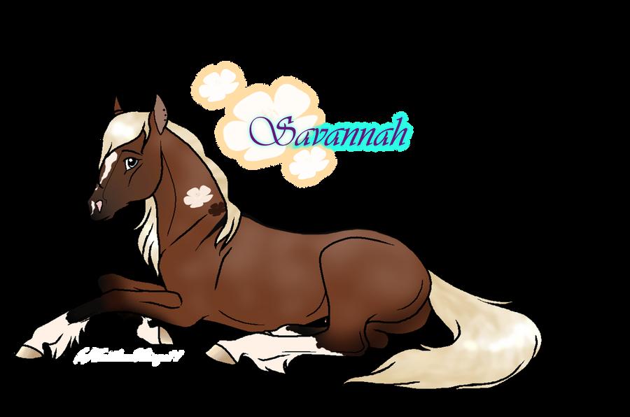 Savannah by icrystalline