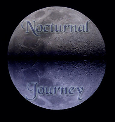 nocturnaljourney's Profile Picture