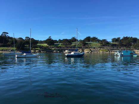 More Boats Sailing Around Fisherman's Wharf
