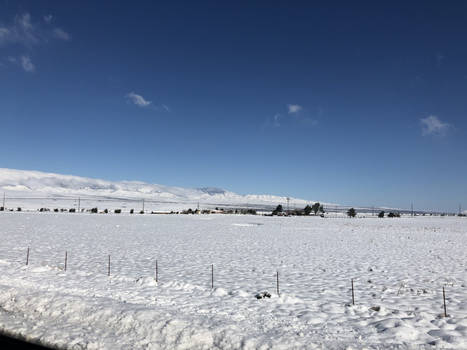 Snow Out in the Country