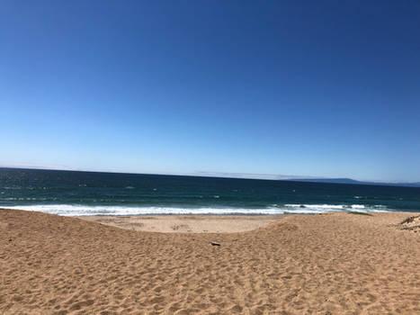 Beach in Marina
