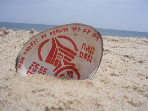 symbols on a sea shell