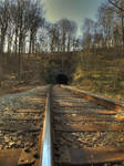 Henryton Tunnel 3