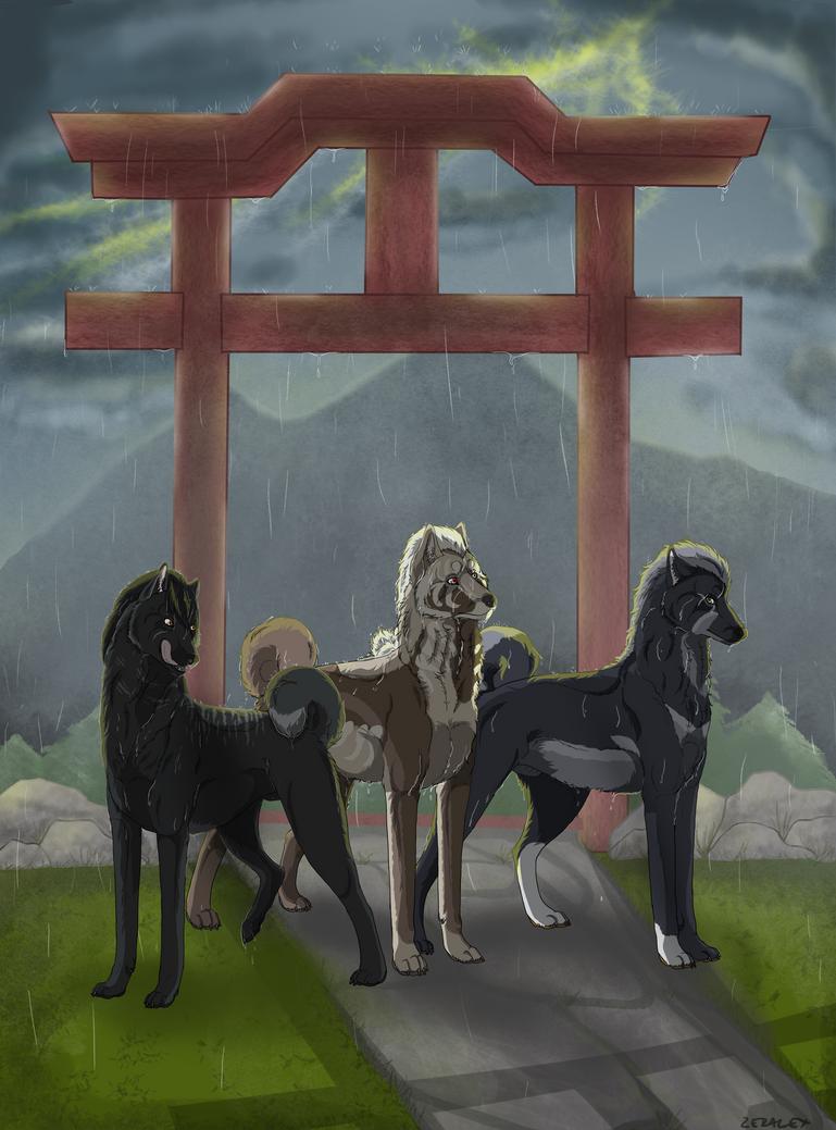 Storm night with friends by ZeRaLeX