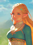 BotW Zelda(3)